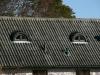 Svarta kupor i gl. cenbonitpannor